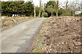 J3784 : Lane, Greenisland (2013-1) by Albert Bridge