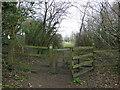 SO7901 : The Cotswold Way towards Long Barrow by Ian S