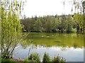 TQ2449 : Priory Pond, Reigate by Paul Gillett