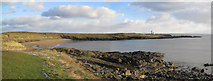 NT4999 : Wood Haven and Elie Ness Lighthouse by Les Hull