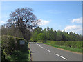 NU0228 : The B6348 near Fowberry Mains by Graham Robson