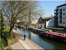 TQ3283 : Regent's Canal above Sturt's Lock by Stephen McKay