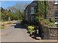 NU0616 : Very narrow minor road leading east from Powburn by Barbara Carr