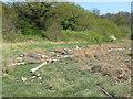 TM0322 : Driftwood on Wivenhoe Marshes by Roger Jones