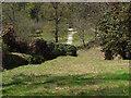 TQ3331 : Wakehurst Place: woodland by Alan Hunt
