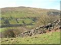 SD9697 : Wall, Rowleth Wood by Mick Garratt
