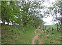 NU1723 : Public footpath to Tynely by Russel Wills