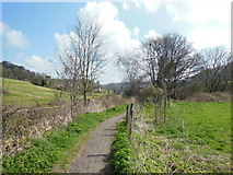ST7693 : The Cotswold Way at Holywell by Ian S