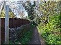 NT9927 : Bridleway near youth hostel, Wooler by Barbara Carr