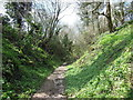 ST7691 : The Cotswold Way in Longcroft Wood by Ian S