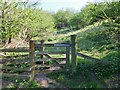 NT9828 : Footpath to Broomey Road by Barbara Carr
