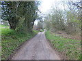 SJ2534 : Offa's Dyke Path by John Haynes