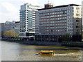 TQ3078 : London duck tour entering River Thames near Vauxhall by PAUL FARMER