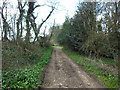 ST7788 : The Cotswold Way at Claypit Wood by Ian S