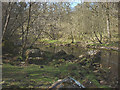 NY6368 : The River Irthing at the Popping Stone by Karl and Ali