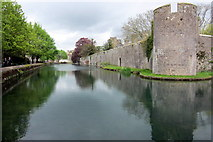 ST5545 : Moat by the Bishop's palace by Philip Jeffrey