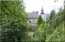 SK3487 : Albion Street Garden, Crookesmoor, Sheffield - 4 by Terry Robinson