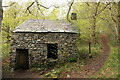 SD3194 : Derelict building, Machell Coppice by Rob Noble