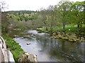 NU0601 : River Coquet below Rothbury by Russel Wills