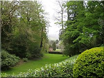 ST5071 : A sudden clearing - Tyntesfield by Sarah Smith