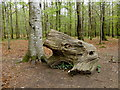 J3332 : Dead tree, Tollymore Forest Park by Kenneth  Allen