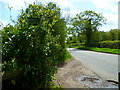 SU9187 : Footpath reaches lane north of Hedsor by Shazz