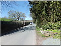 SJ2633 : Looking west along the road into Selattyn by John Haynes