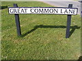 TM3886 : Great Common Lane sign by Adrian Cable