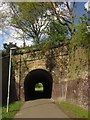 TQ4171 : Foot tunnel, Chinbrook Meadows by Derek Harper