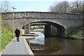 NT2070 : Twin Bridges by Anne Burgess