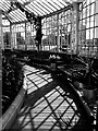 NS6064 : Inside The Winter Gardens, Glasgow by Rossographer