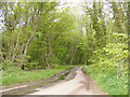 TM3788 : Castle Road & The Angles Way footpath by Adrian Cable