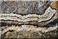SK1482 : Peakshold Sough - Vein by Ashley Dace