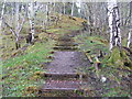 NH1981 : Path in Lael Forest Garden by M J Richardson