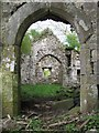 SN0613 : View into the derelict Newton North church by Gareth James