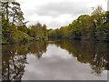 TQ7556 : River Medway by David Dixon