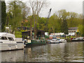 TQ7557 : River Medway, Foords Wharf by David Dixon