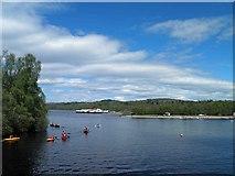 NS3882 : Loch Lomond shores by Steve  Fareham