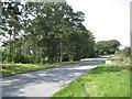 "SP1167 : Ullenhall Lane past Crowleys Oak, ""Ullenhall's veteran tree""  by Robin Stott"