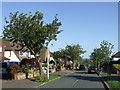 TQ4492 : Millwell Crescent, near Chigwell by Malc McDonald