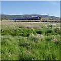 NH5646 : Railway on an embankment, by the Beauly Firth by Craig Wallace