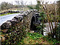 "G9580 : ""Miss Jenny's Bridge"", also known as Thrushbank Bridge by D Gore"