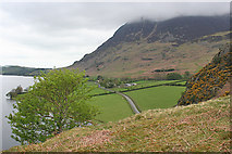 NY1618 : Rannerdale by Anne Burgess