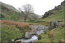 NY1618 : Beck in Rannerdale by Anne Burgess
