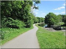 SE2436 : Towpath - Leeds-Liverpool Canal - Newlay Locks - Bramley Fall Park by Betty Longbottom