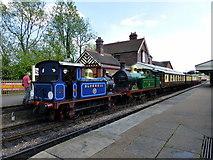 TQ4023 : Train at Sheffield Park Station by PAUL FARMER