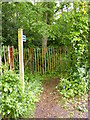 TM1138 : Footpath to Bentley Hall by Adrian Cable