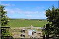 NU1334 : Farmland near Easington by Billy McCrorie