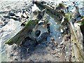 SN6089 : Ancient tree roots and peat on Borth Beach by Penny Mayes