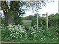 TQ5596 : Public footpath and stile, South Weald Common by Malc McDonald